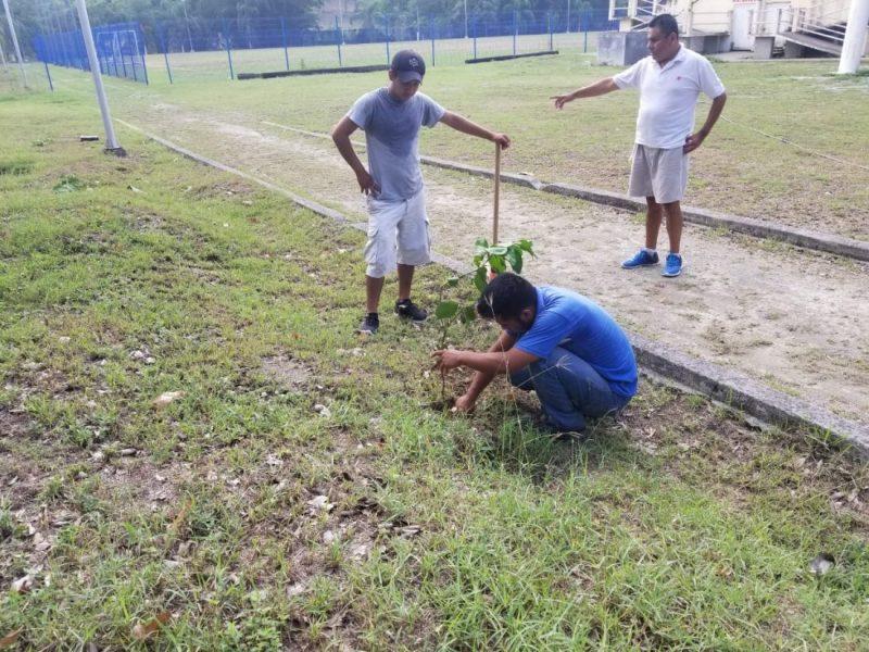 reforestación Aquismón