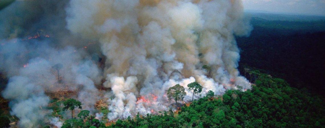 Van casi 73,000 incendios en el Amazonas en este año
