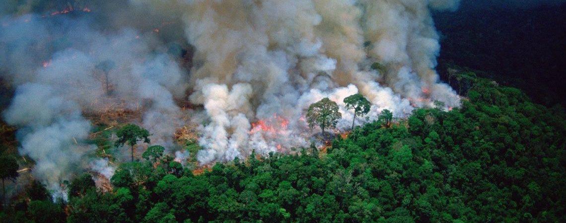amazonas incendiandose