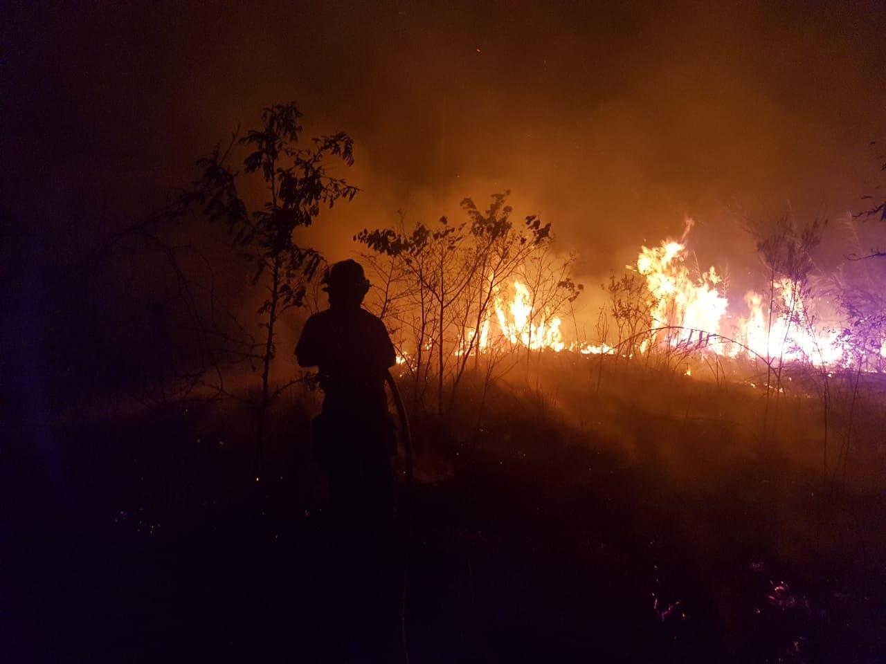 incendio de pastizal