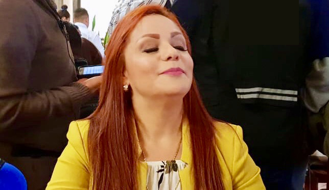 erika briones perez - villa de reyes