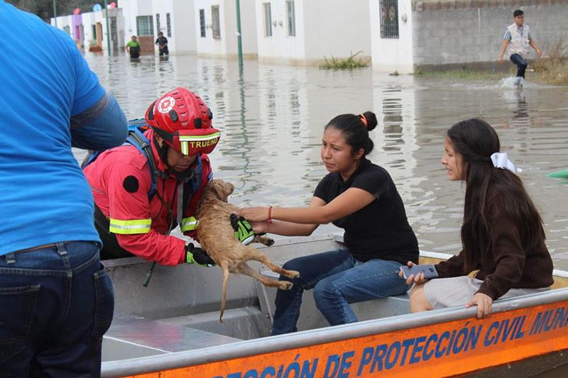 Por chambonearías de la constructora se inunda La Esperanza al norte de la ciudad - Código San Luis