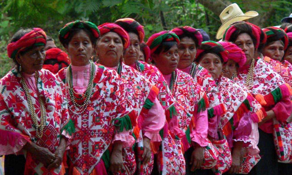 Prepara Poder Legislativo consulta indígena en San Luis Potosí - Código San Luis