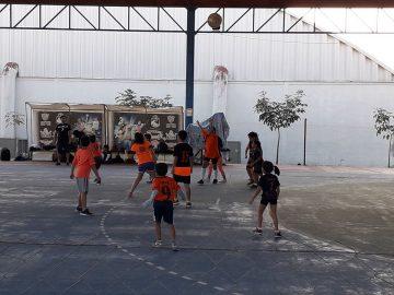 campeonato nacional de handball