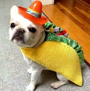 mascota-disfraz-mexicano