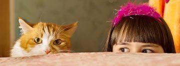 niños-gatos