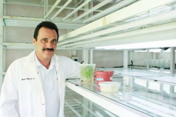 doctor Ángel Alpuche Solís