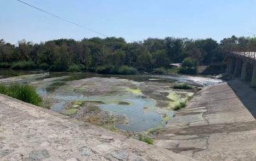 Río Valles agoniza