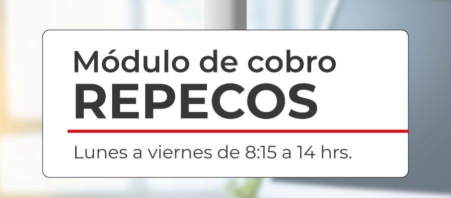 MÓDULO-REPECOS