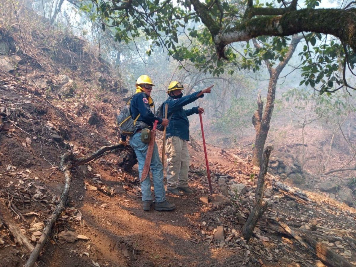 Incendios-Forestales-Huasteca