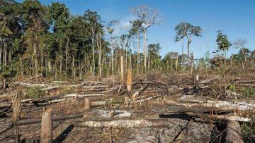 deforestación-amazonía-brasil