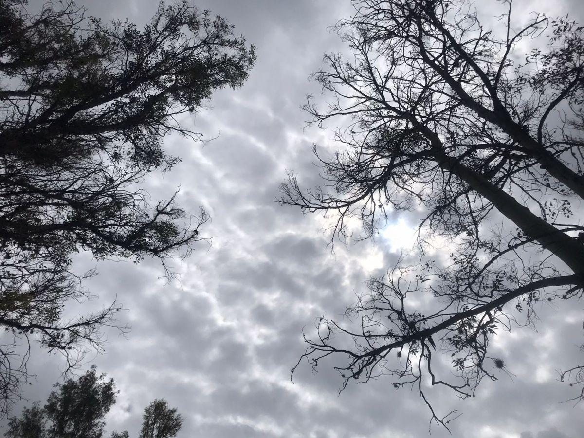 lluvia-tormentas-slp