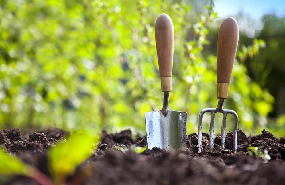 jardineria y agricultura