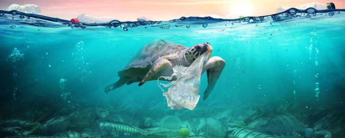 océanos-supervivencia-