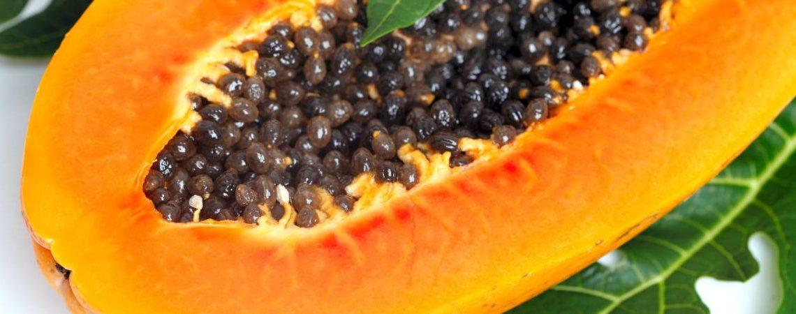 Beneficios de las semillas de papaya en tu organismo