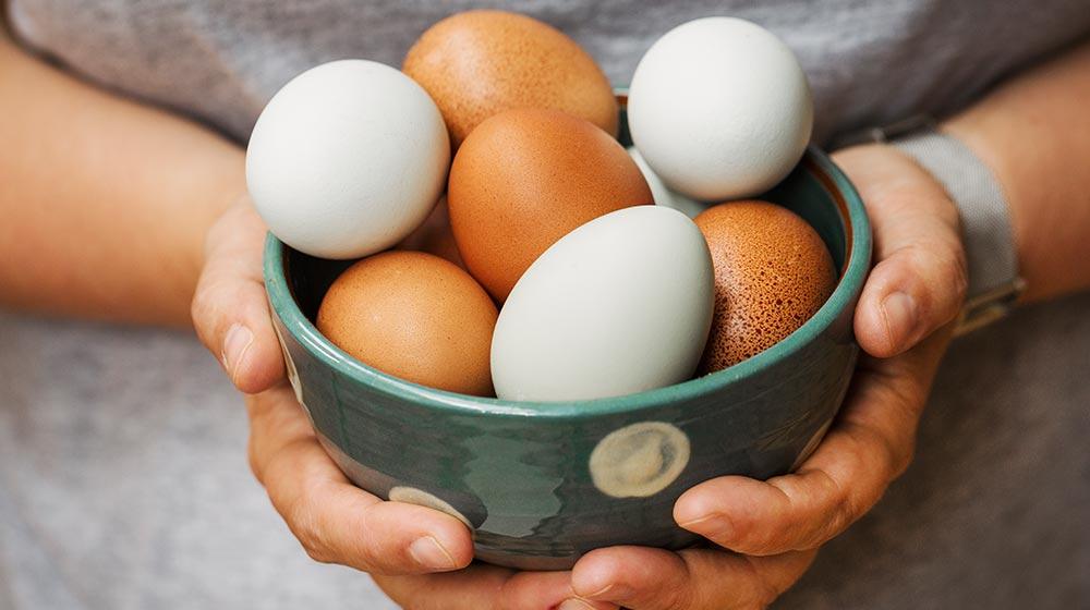venta-huevo-pandemia