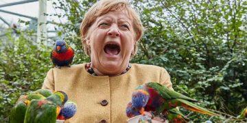 angela-merkel-alemania-aves