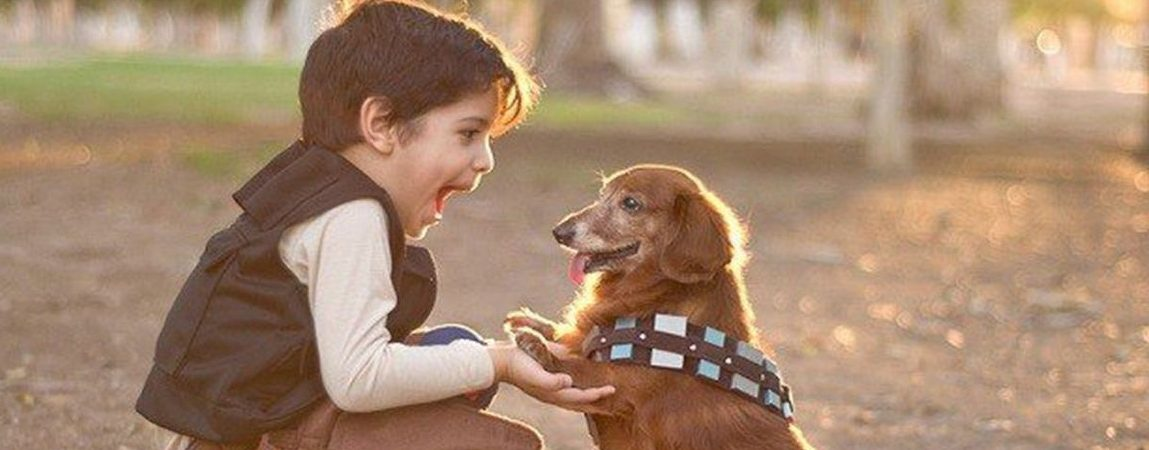 Conoce como lograr una buena convivencia entre los niños y las mascotas